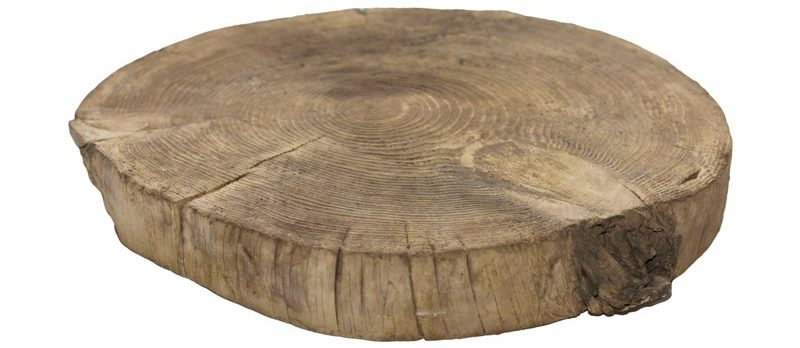 Спил дерева «большой без коры»