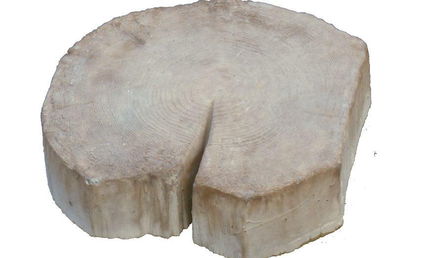 Спил дерева «малый»